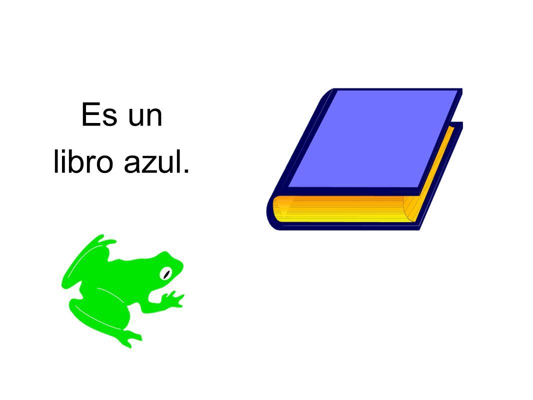 Es un libro azul.