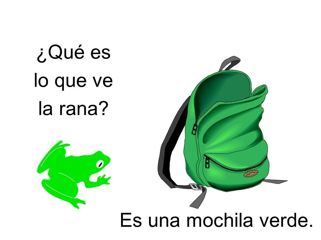 ¿Qué es lo que ve la rana Es una mochila verde.