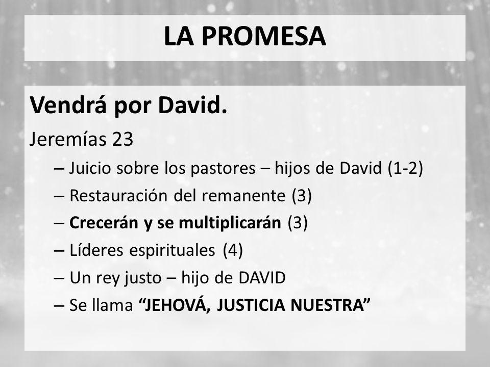 LA PROMESA Vendrá por David. Jeremías 23