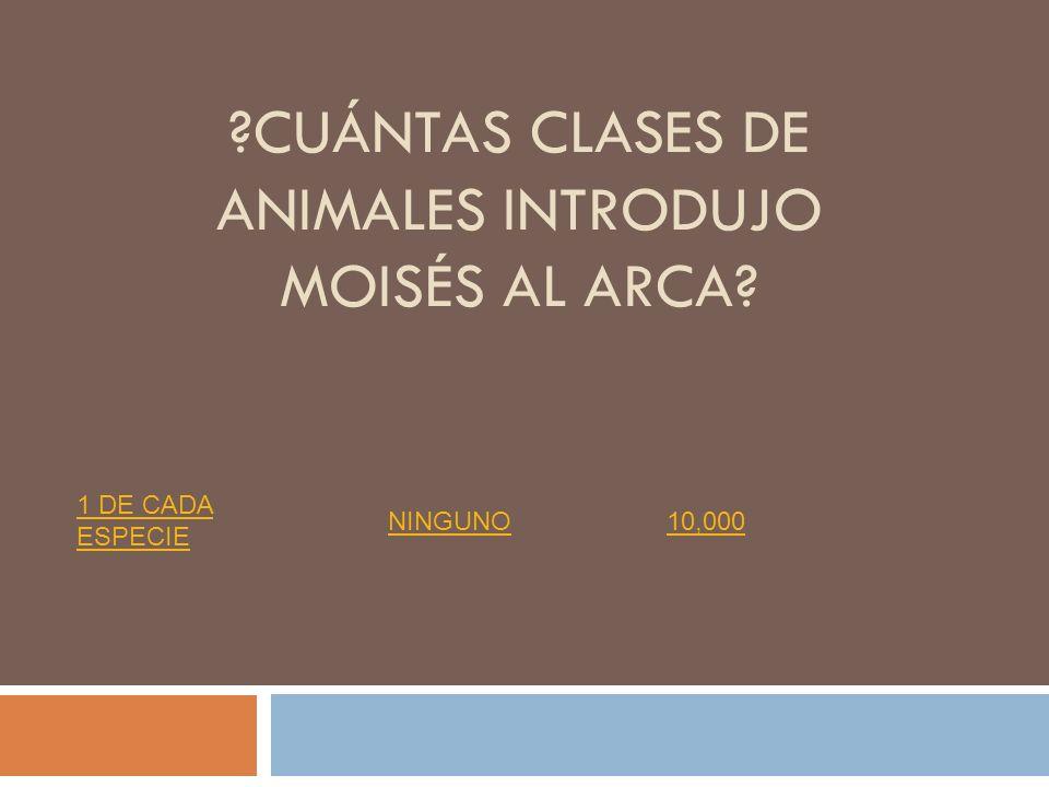 cuántas clases de animales introdujo moisés al arca