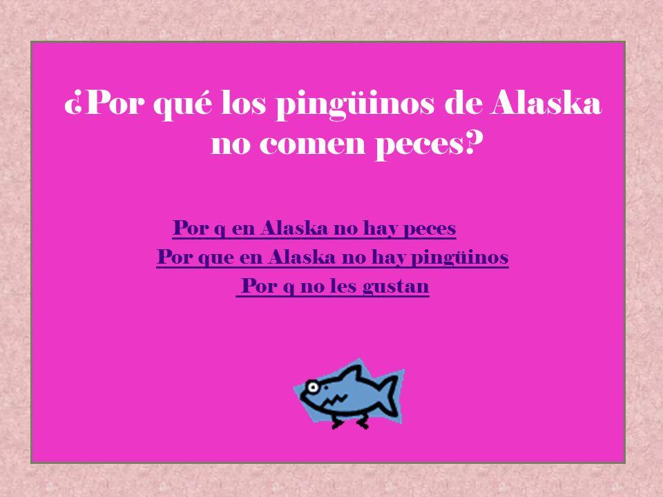 ¿Por qué los pingüinos de Alaska no comen peces