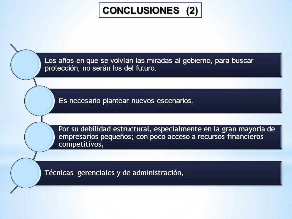 CONCLUSIONES (2) Los años en que se volvían las miradas al gobierno, para buscar protección, no serán los del futuro.