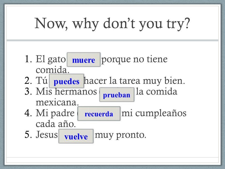 Now, why don't you try El gato (morir) porque no tiene comida.