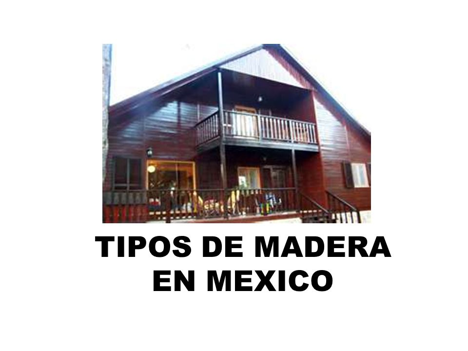 TIPOS DE MADERA EN MEXICO