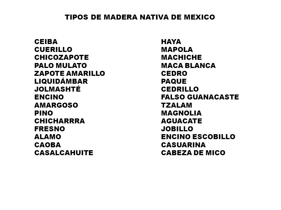 TIPOS DE MADERA NATIVA DE MEXICO
