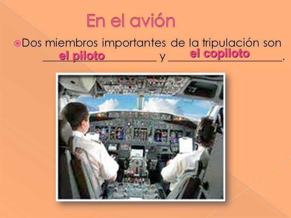 En el avión el copiloto el piloto