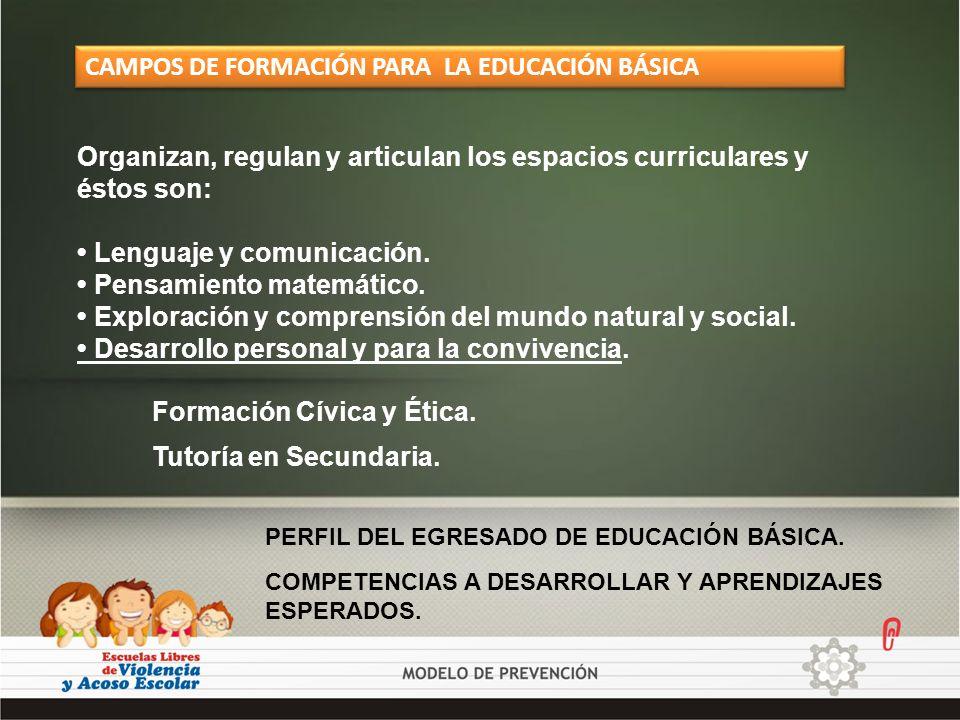 CAMPOS DE FORMACIÓN PARA LA EDUCACIÓN BÁSICA
