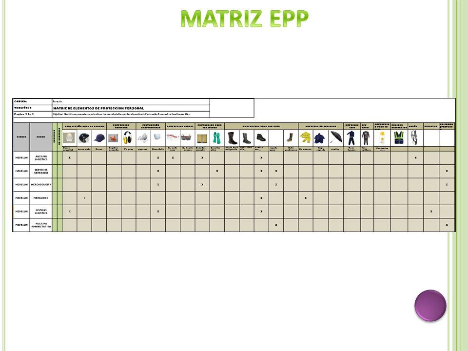 MATRIZ EPP