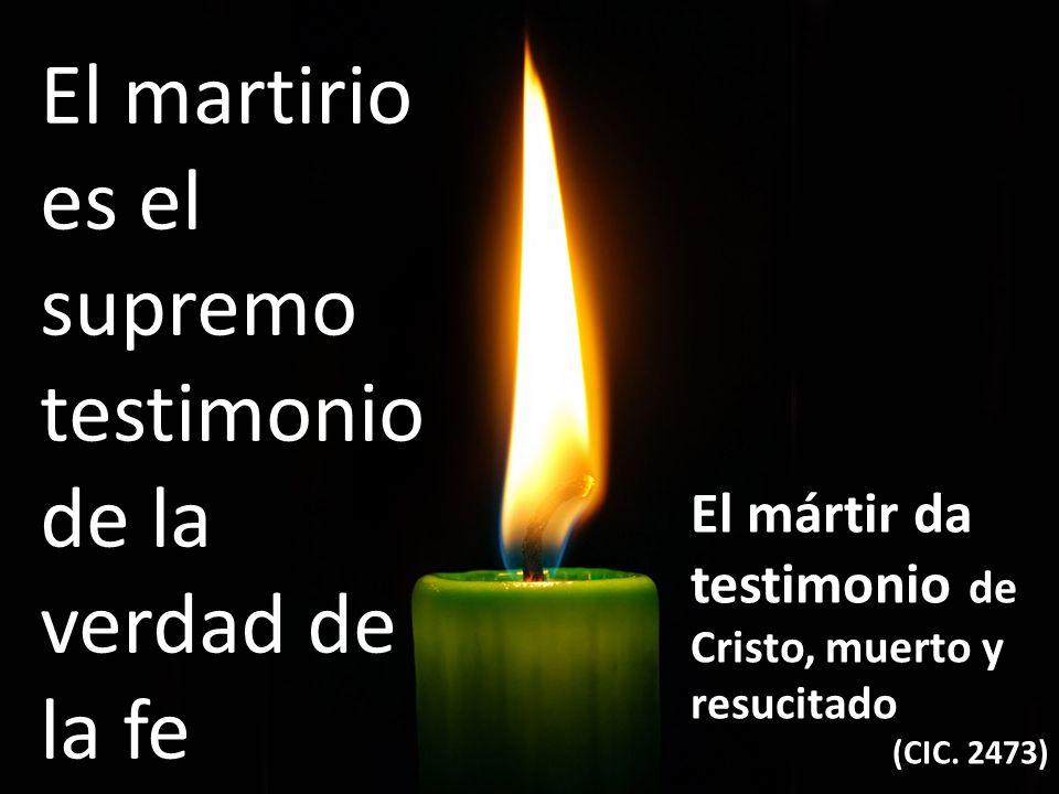El martirio es el supremo testimonio de la verdad de la fe