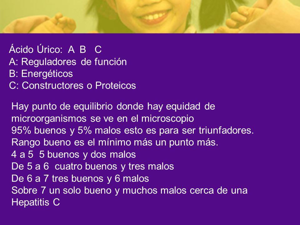 Ácido Úrico: A B C A: Reguladores de función. B: Energéticos. C: Constructores o Proteicos.