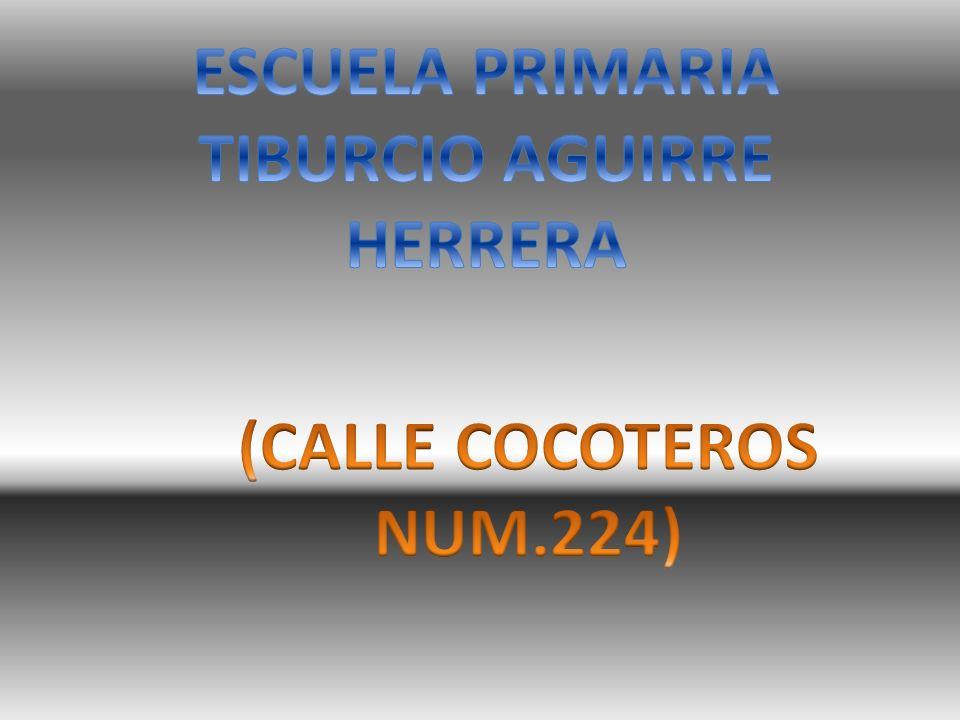 ESCUELA PRIMARIA TIBURCIO AGUIRRE HERRERA