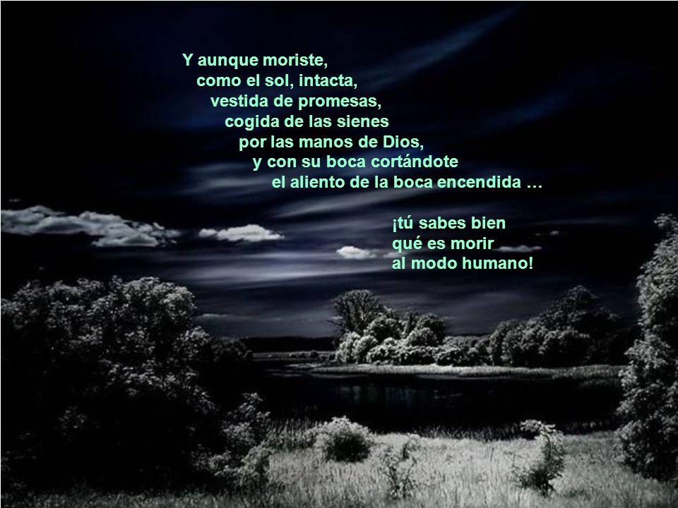 Y aunque moriste, como el sol, intacta, vestida de promesas, cogida de las sienes. por las manos de Dios,