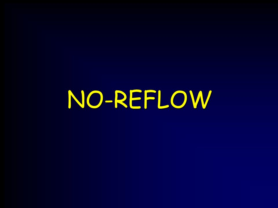 NO-REFLOW
