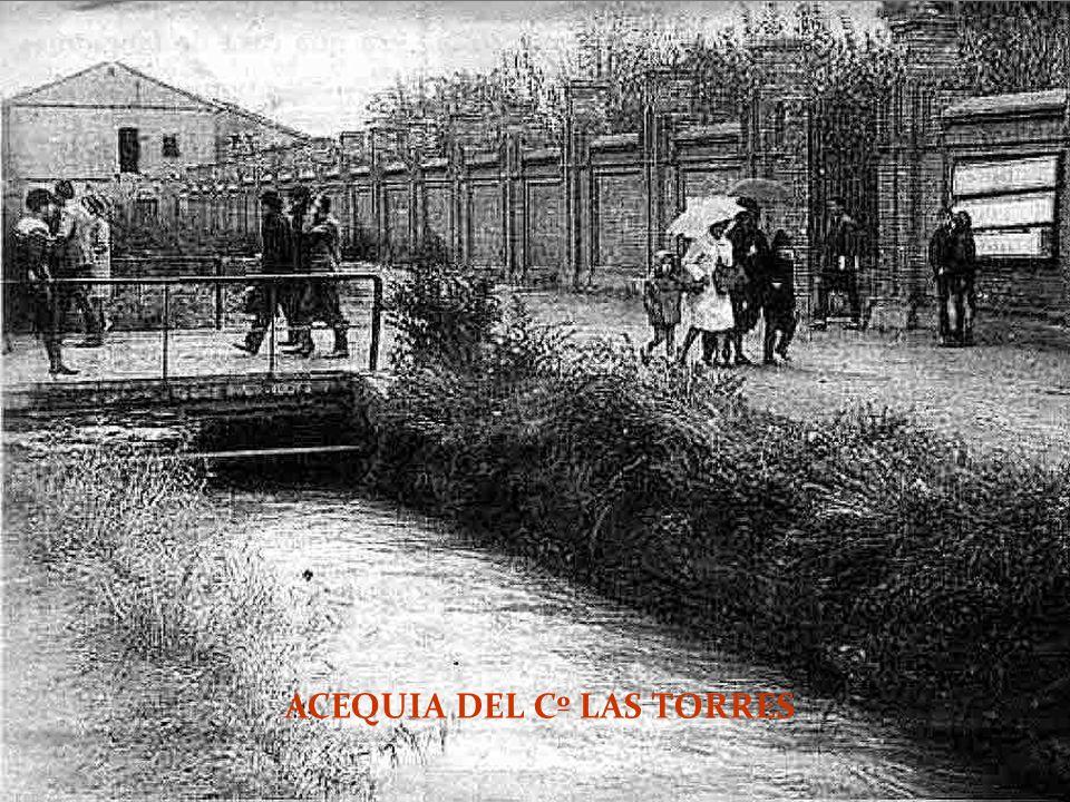 ACEQUIA DEL Cº LAS TORRES