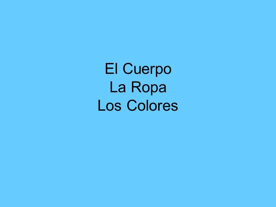 El Cuerpo La Ropa Los Colores