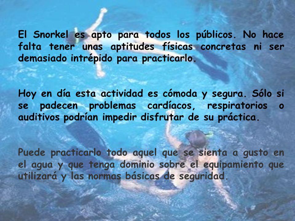 El Snorkel es apto para todos los públicos