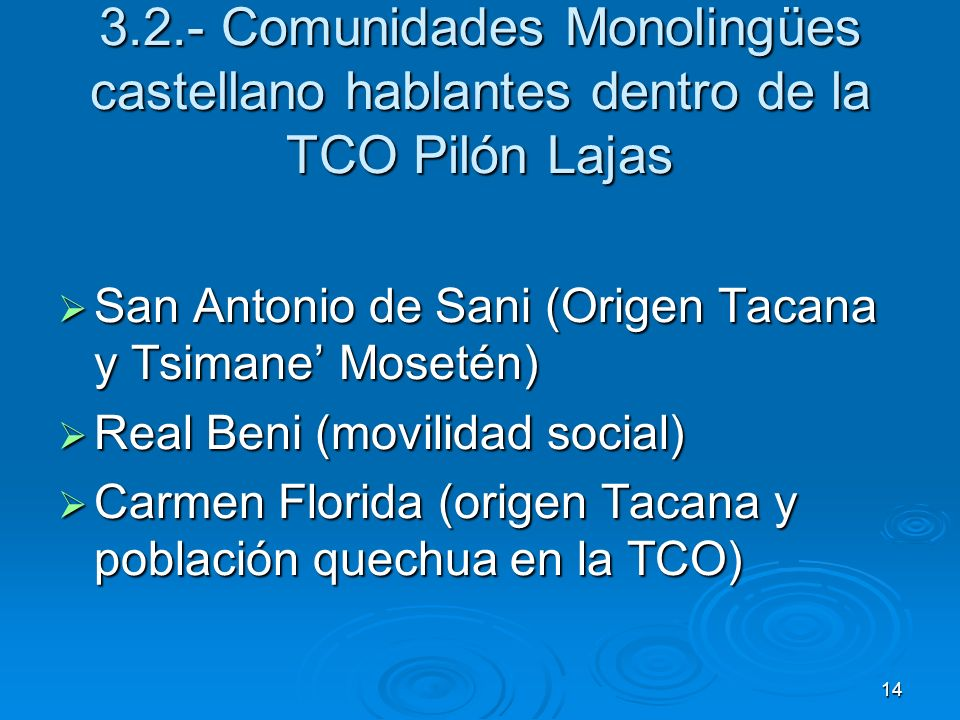3.2.- Comunidades Monolingües castellano hablantes dentro de la TCO Pilón Lajas