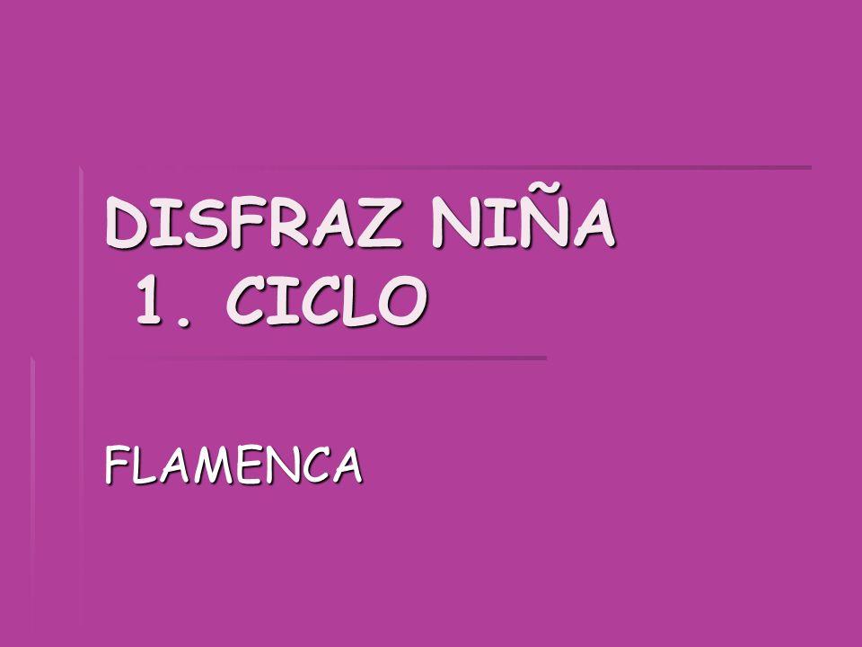 DISFRAZ NIÑA 1. CICLO FLAMENCA