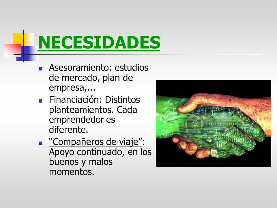 NECESIDADES Asesoramiento: estudios de mercado, plan de empresa,...