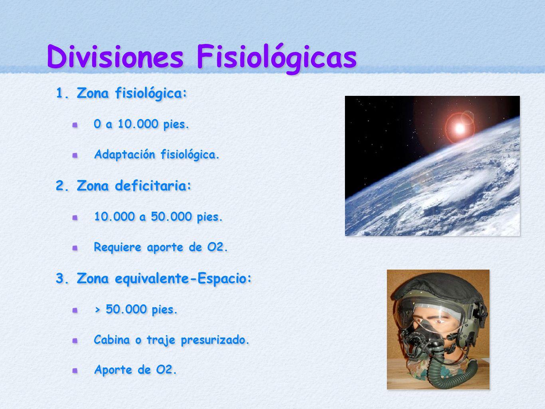 Divisiones Fisiológicas