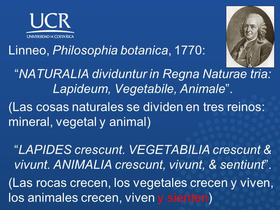 Linneo, Philosophia botanica, 1770: