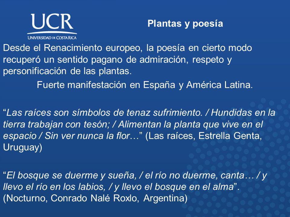 Fuerte manifestación en España y América Latina.