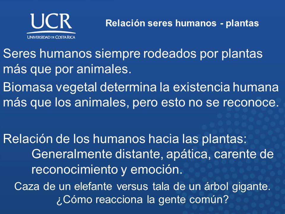 Relación seres humanos - plantas