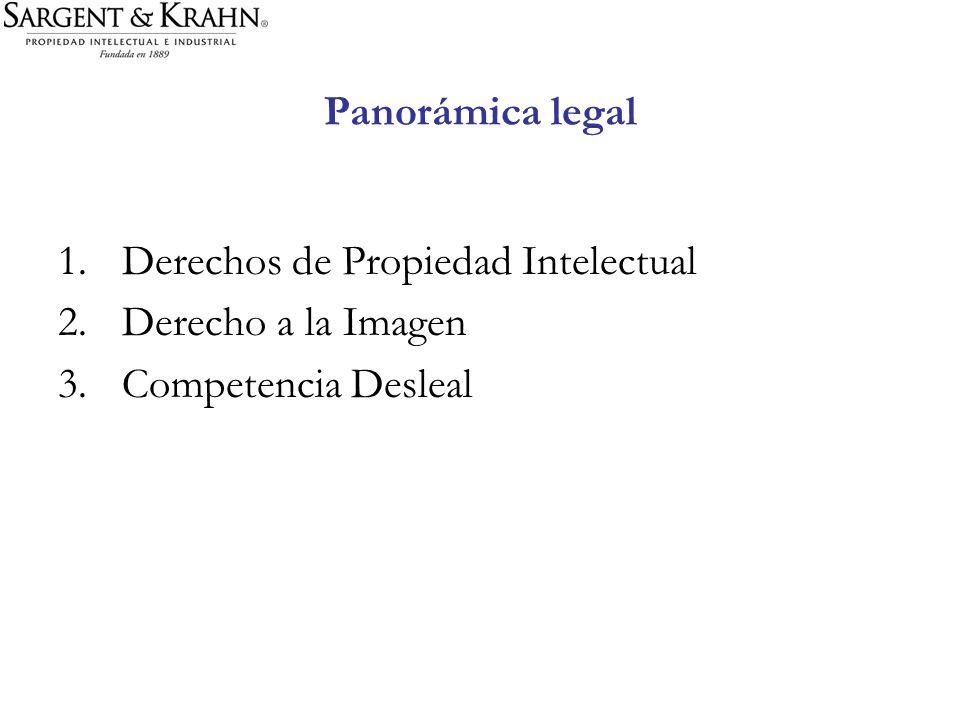 Panorámica legal Derechos de Propiedad Intelectual Derecho a la Imagen Competencia Desleal