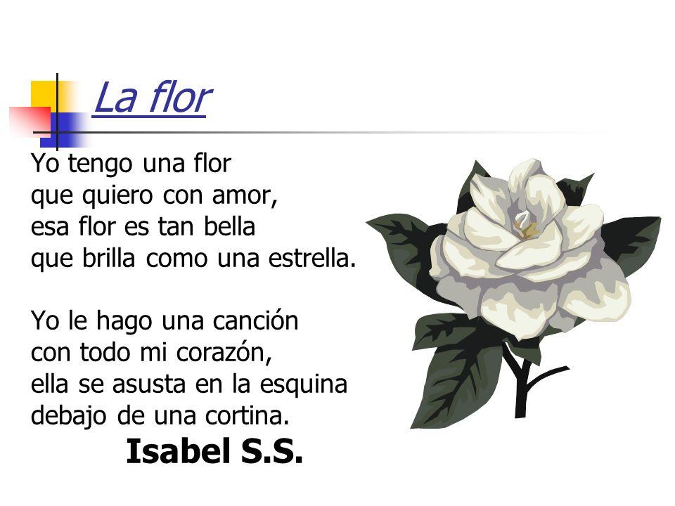 La flor Isabel S.S. Yo tengo una flor que quiero con amor,