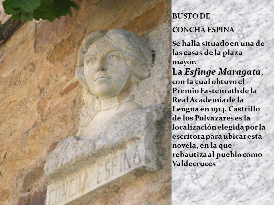 BUSTO DE CONCHA ESPINA.