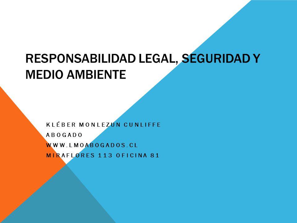 RESPONSABILIDAD LEGAL, SEGURIDAD Y MEDIO AMBIENTE