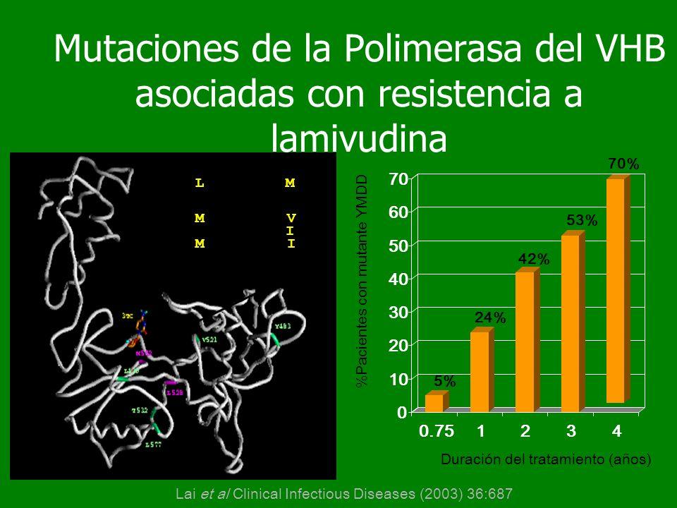 Mutaciones de la Polimerasa del VHB asociadas con resistencia a lamivudina