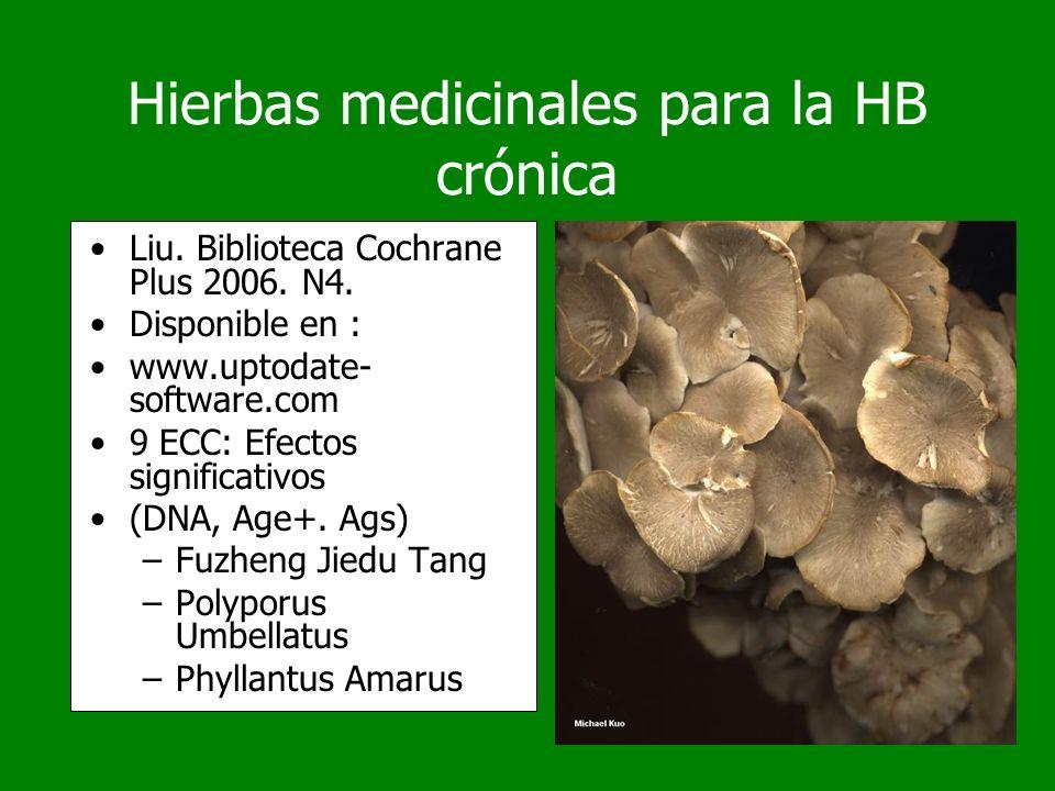 Hierbas medicinales para la HB crónica