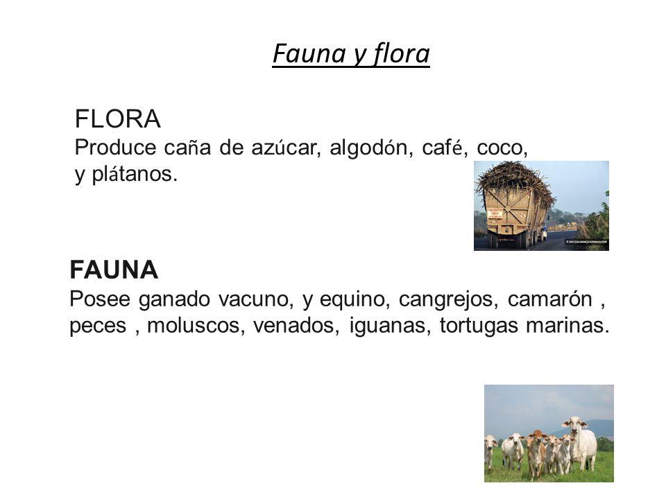 Fauna y flora FLORA FAUNA