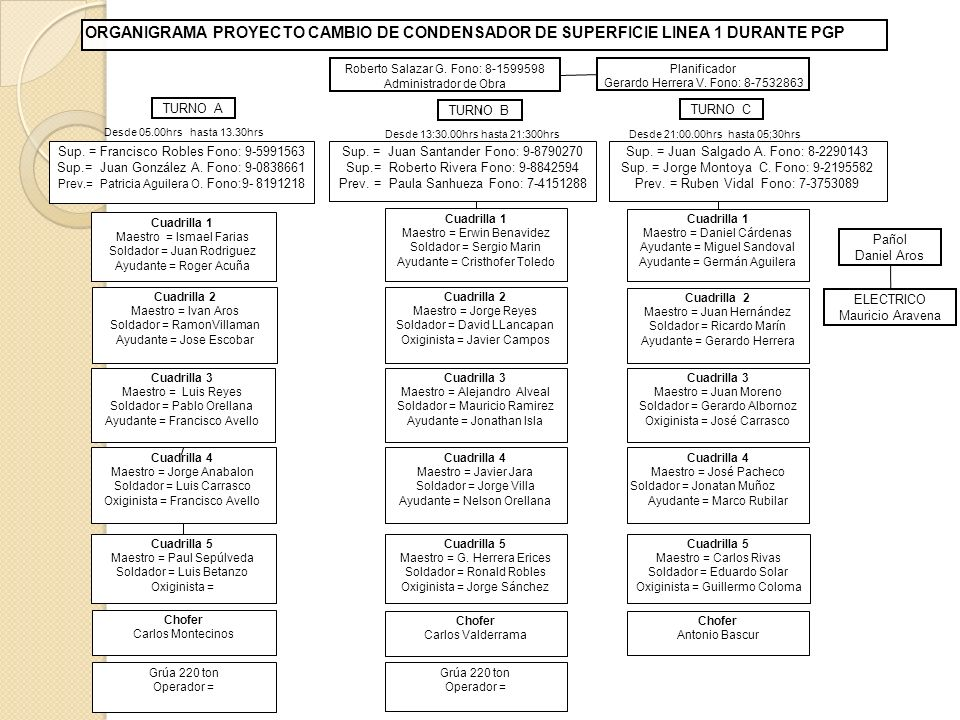 ORGANIGRAMA PROYECTO CAMBIO DE CONDENSADOR DE SUPERFICIE LINEA 1 DURANTE PGP