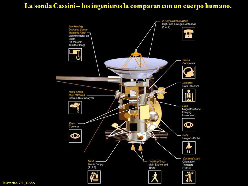 La sonda Cassini – los ingenieros la comparan con un cuerpo humano.