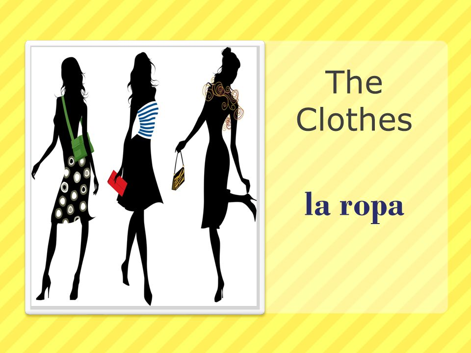 The Clothes la ropa