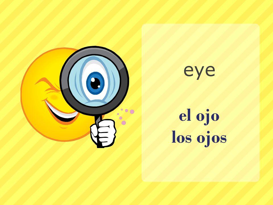 eye el ojo los ojos