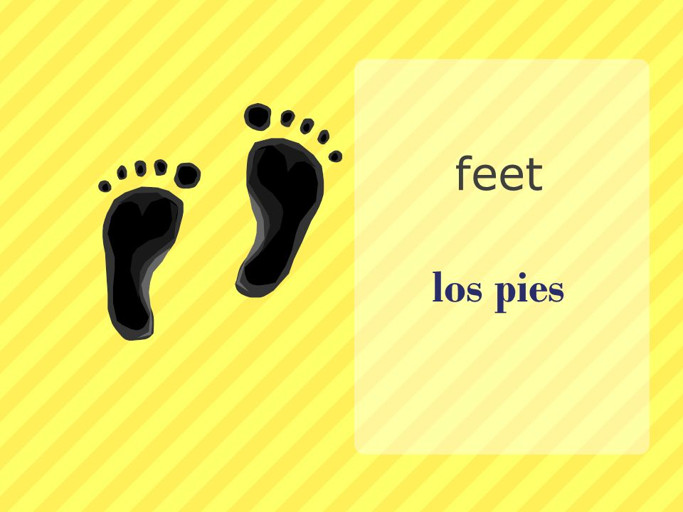 feet los pies