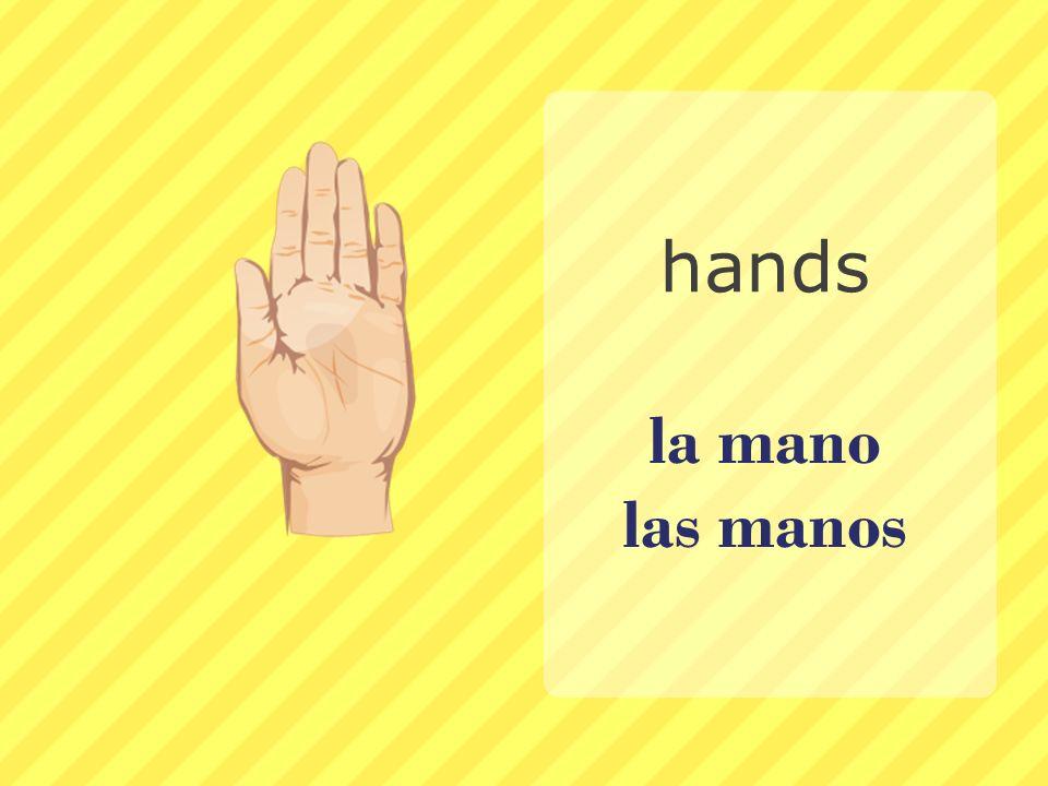 hands la mano las manos