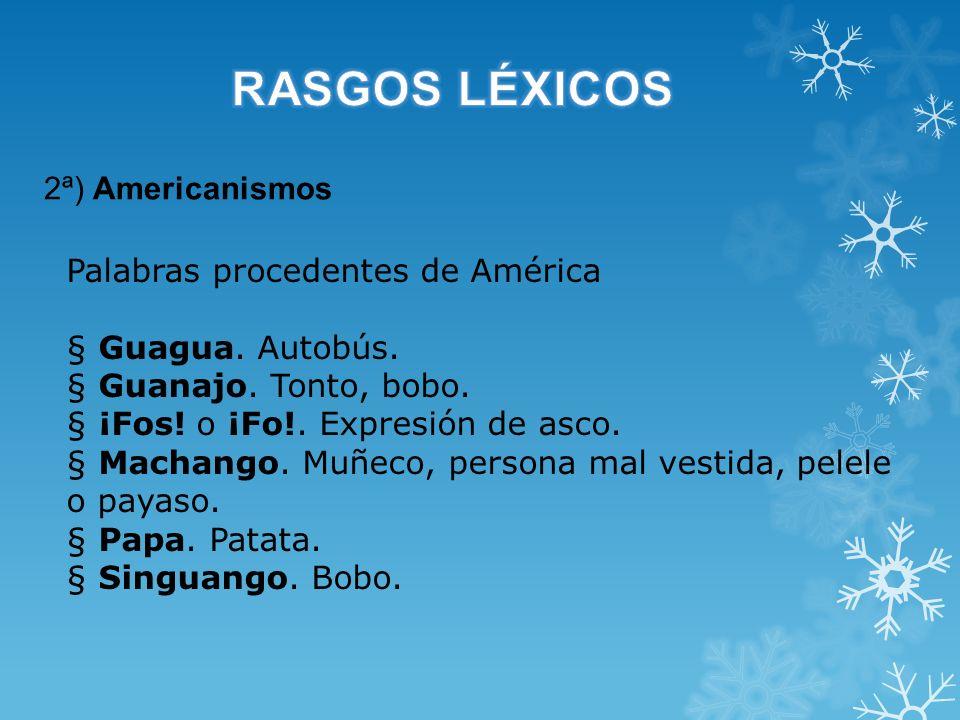 RASGOS LÉXICOS 2ª) Americanismos Palabras procedentes de América