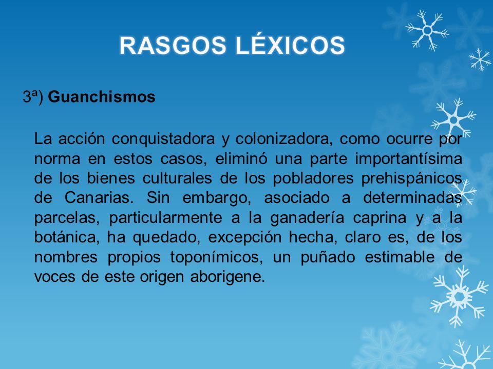 RASGOS LÉXICOS 3ª) Guanchismos