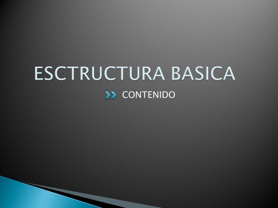 ESCTRUCTURA BASICA CONTENIDO