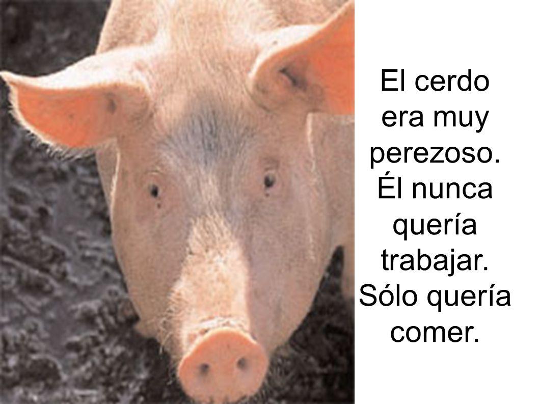 El cerdo era muy perezoso. Él nunca quería trabajar. Sólo quería comer.