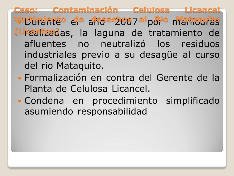 Formalización en contra del Gerente de la Planta de Celulosa Licancel.