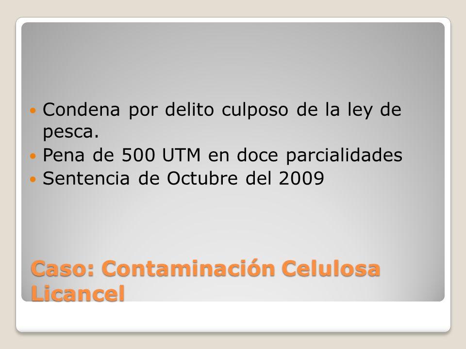 Caso: Contaminación Celulosa Licancel