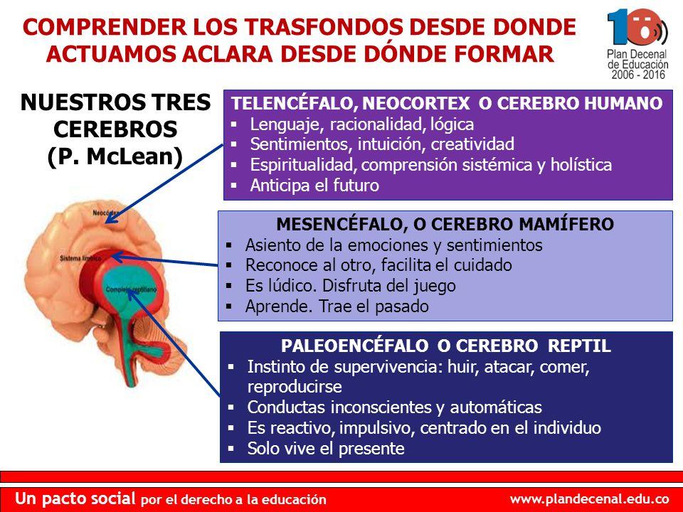 NUESTROS TRES CEREBROS (P. McLean)