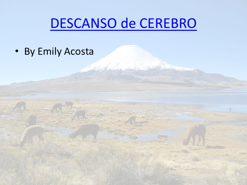 DESCANSO de CEREBRO By Emily Acosta