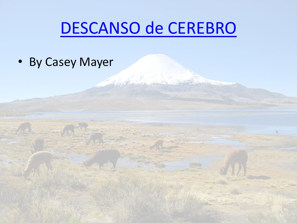 DESCANSO de CEREBRO By Casey Mayer