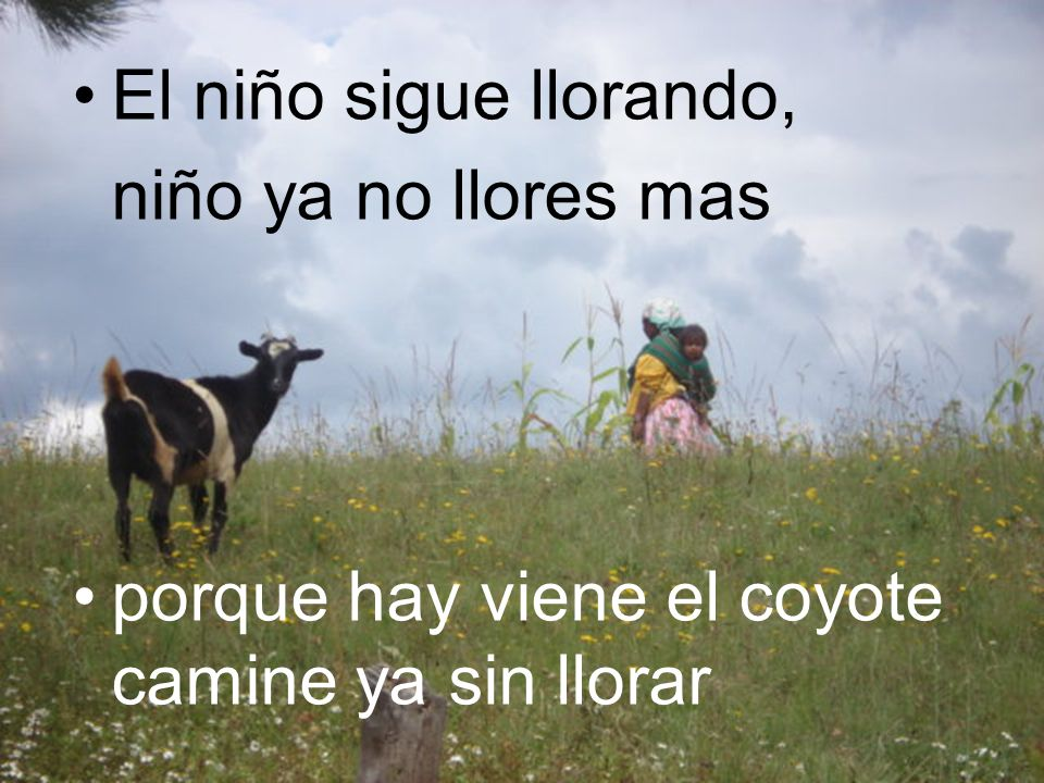 El niño sigue llorando, niño ya no llores mas porque hay viene el coyote camine ya sin llorar